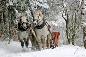 sleigh-ride-549727_640